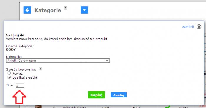 e-sklepy_kopiowanie_produktu_2015