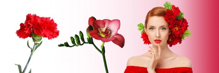 kwiaty-banner-3
